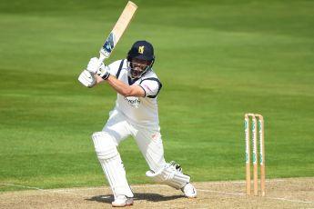 News   Isle of Wight Cricket Board