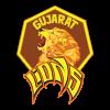 Gujarat Lions Cricket Team