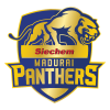 Siechem Madurai Panthers Cricket Team