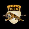 Chitwan Tigers