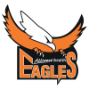 Mashonaland Eagles Cricket Team