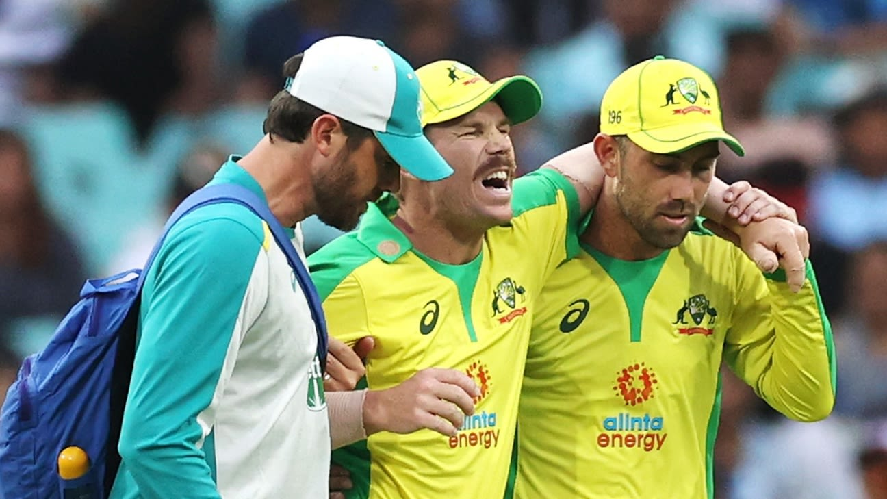 David Warner admits rushing back from injury to face India was a mistake - ESPNcricinfo